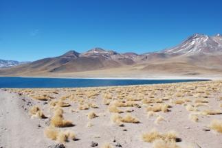cile-bolivia-184
