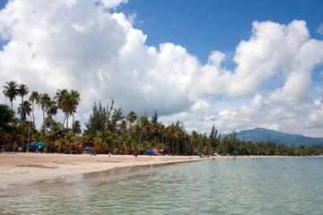 luquillo beach and yunque rainforest_2