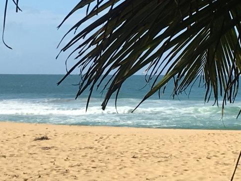 46_caza-y-pesca-beach